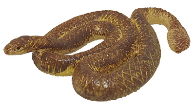 Short Nosed Sea Snake Wild Water Series Yowie With Paper
