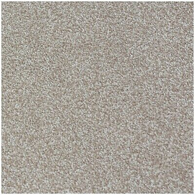 HARDWEARING Beige Felt Back Twist Pile 5m Wide Carpet £6.49m²