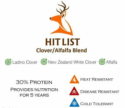 4 lbs Perennial Deer Ladino Clover/Alflafa Food Plot Seed Blend