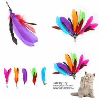 5pcs Colorful Feather Teaser Pet Cat Toys Multifunction Interactive Rotating
