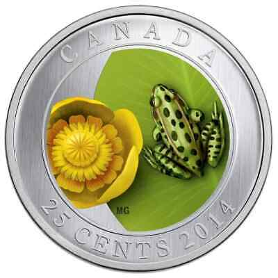 2014 Water-Lily and Leopard Frog 25 Cent Coloured Coin - Royal Canadian Mint