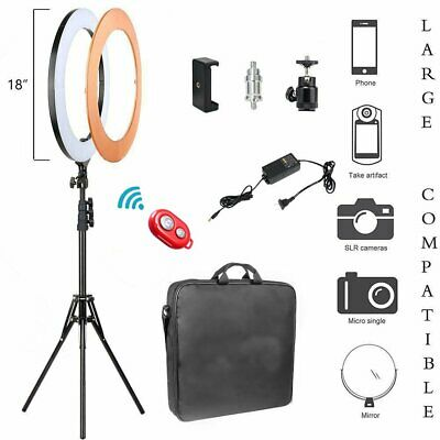 240pcs LED Ring Light Dimmable 6200K Lighting Video Continuous Light Stand Kit