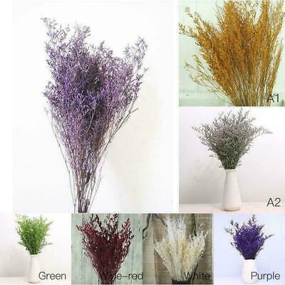1 Bunch Valentine's Grass Natural Dried Flower Bouquet For Home Party Decor Gift