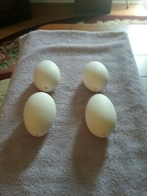 Set of 4 blown goose eggs white with 2 holes crafts and DIY approx.10 inches