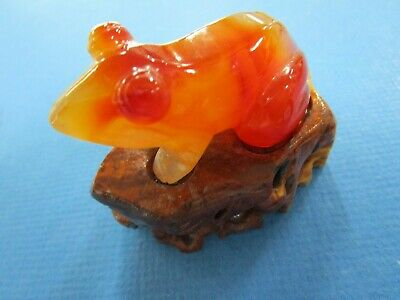 Carnelian Carved Frog  with matching Wooden Stand