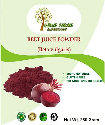 Food Colour Catering Beet Juice Powder 1 kg 100% Natural Superfood Bulk Supply