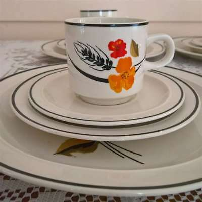 Retro Vintage 4 Person 16 Piece Dinner Set Floral Wheat Design
