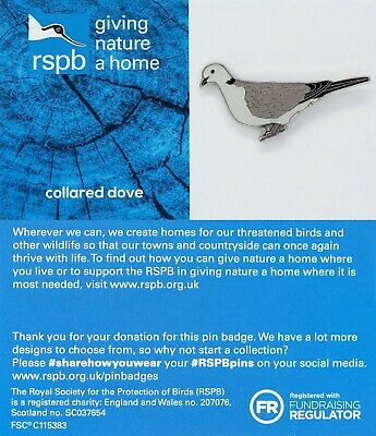 RSPB Pin Badge | collared dove GNAH BLUE (01457)