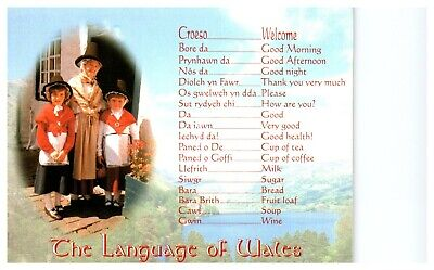 Postcard -   THE LANGUAGE OF WALES            (Ref C1)