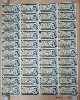 1973 Canada 1 Dollar Bank Note Uncut Sheet Of 40-5x8 Format-ECP Shipping In Tube