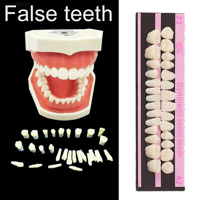 3EAF 2F69 Makeup Acrylic Resin Dental Treatment Synthetic Polymer 28 Teeth/Set