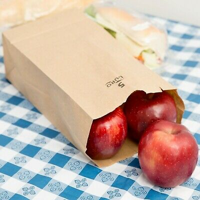 (500-Pack) 5 lb. Brown Disposable Paper Grocery School Lunch Bags, Made in USA