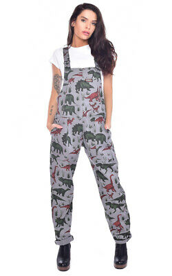 Run And Fly Adventure Dinosaur Grey Stretch Twill Baggy Dungarees Overalls