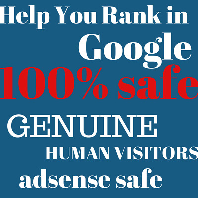 10,000 Unique Genuine Visitors Real Visits Hits Website Web Traffic Business Seo
