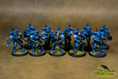 Warhammer 40K Vanguard Space Marines from Shadowspear - painted