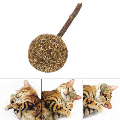 Cat Chewing Stick Catnip Ball Lollipop Kitten Pet Teeth Cleaning Playing Toys