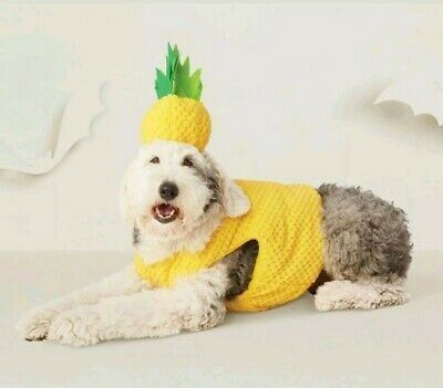 Hyde and Eek! SMALL Pet Pineapple Set Vest/Hat