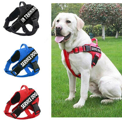 Pet Service Dog Puppy Harness No Pull Soft Adjustable Vest & 2 Patches XS-XL