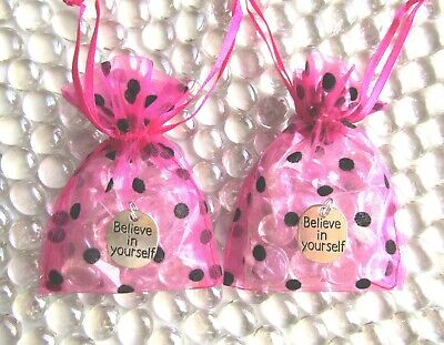 Clear Shimmer Glass Friendship Stones + Believe Charms + Polka Dot Organza Bags