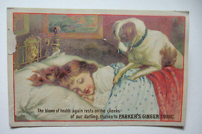 1880's Parker's Ginger Tonic Trade Card