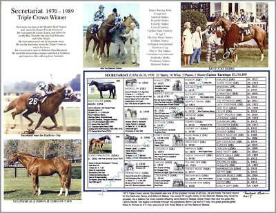 Large 11 X 14 Horse Racing SECRETARIAT Triple Crown picture photo pedigree