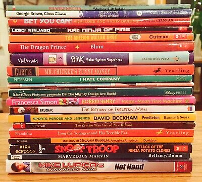Very Nice Lot Of 20 Boys Chapter Books, 2nd-4th Grade, FREE SHIPPING J9