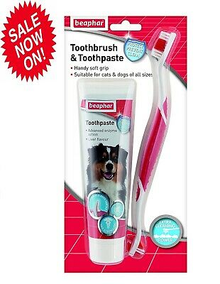 Beaphar Pet Toothbrush and Toothpaste Kit For Dogs, Cat Fresh Breath 100g