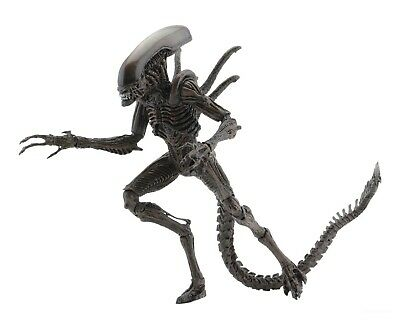 "Aliens - 7"" Scale Action Figure - Series 14 - Alien Resurrection Warrior - NECA"