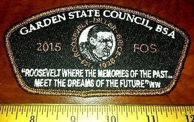 Woodbadge Dr Who Issue MINT CSP Garden State Council SA-