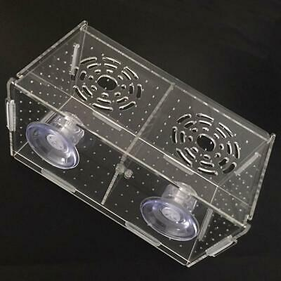 Fish Breeder Box Fish Tank Isolation Divider Acrylic Aquarium Hatching Incubator