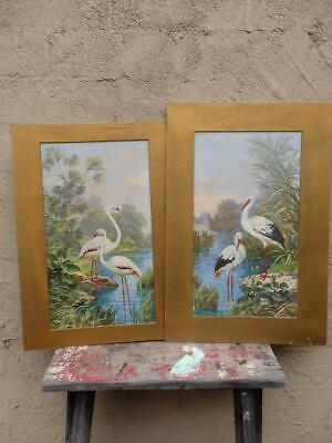 VICTORIAN Chic 1900 Vintage FLAMINGO & EGRET PRINTS Pictures x 2 Ready to FRAME