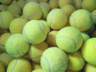 4 6 8 or 10 Used Tennis Balls For Dogs - Washed, so they dont harm your dogs