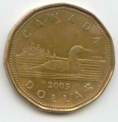 Canada 2005 Loonie Canadian One Dollar $1 EXACT COIN SHOWN