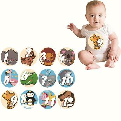 Baby Pregnant Women Monthly Pograph Sticker Month 1-12 Milestone Sticker-- U0Y7