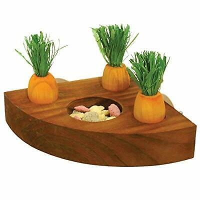 Rosewood Boredom Breakers Carrot Toy And Treat Holder