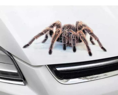 Spider Tarantula Rear Window Decal Graphic Sticker Car Truck SUV Van Animals 636