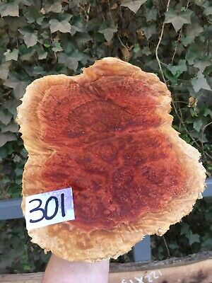Red Mallee Burl Woodturning Blanks/burrs/exotic Woods NEW STOCK !!