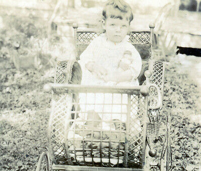 the kid in the stroller outdoor, landscape holding doll