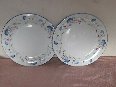 Royal Doulton ~ Expressions ~ Windermere ~ 2 Large Dinner Plates