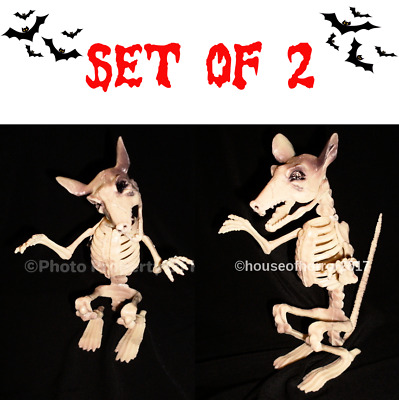 "7"" Poseable Halloween Rat Mouse Skeleton Scary Haunted House Prop Decoration"