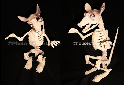 **Set Of 2** Halloween Poseable Rat Mouse Skeleton Haunted House Prop Decoration