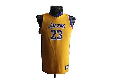on sale a851e c6be5 LEBRON JAMES LOS Angeles Lakers Kids 4-7 NBA Replica Jersey ...