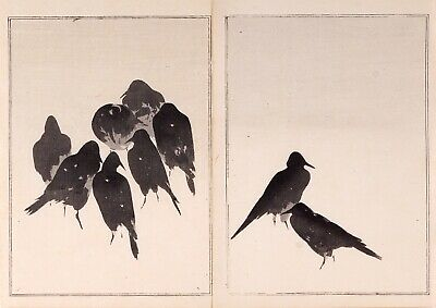 Authentic 19th Century Watanabe Seitei (Shotei) Woodblock Print EXQUISITE