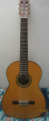 Full Size 6 String Nylon Strung Acoustic Guitar by Walden