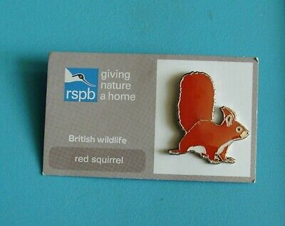 RSPB Red Squirrel stud pin badge charity