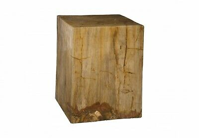 "18"" Tall Stool Beautiful Petrified Wood Contemporary Base Wood Square"