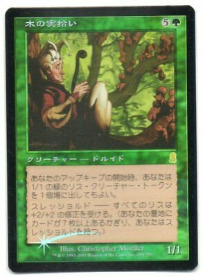 MTG Japanese Foil Nut Collector Odyssey NM-