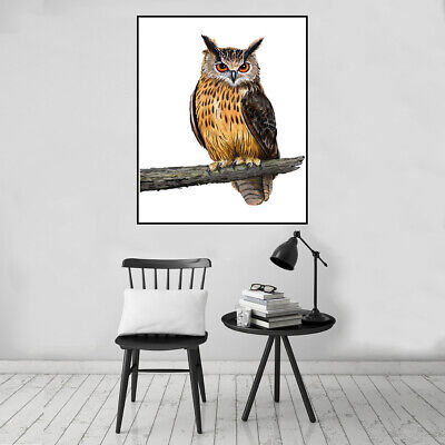 Nordic Owl Animal Canvas Oil Painting Poster Bedroom Picture Wall Home Art Decor