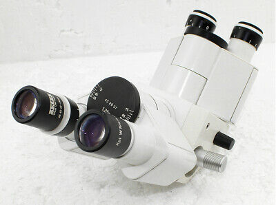 Carl Zeiss Duo - Discussion - Binocular with one pair of oculars for Microscope
