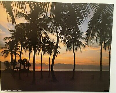 33131482ww Home Décor Items Home, Furniture & DIY Beautiful Palm trees at sunset beach tropical window wall sticker